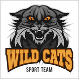 Wildcat mascot - sport team. Stock Photos