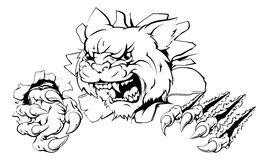Wildcat ripping through wall. A wildcat or cougar sports mascot ripping through the background Royalty Free Stock Images