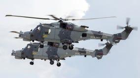 Wildcats de AgustaWestland AW159 Imagens de Stock Royalty Free