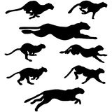 Wildcats set. Set of different wildcats running silhouettes for design use stock illustration