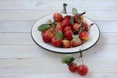 Wilde Äpfel auf der Platte Stockfoto