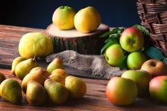 Wilde Äpfel auf Holztisch Lizenzfreie Stockbilder