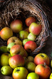 Wilde Äpfel im Korb Stockfotos