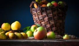 Wilde Äpfel im Korb Stockbilder