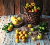Wilde Äpfel und Birnen im Korb Lizenzfreies Stockfoto