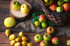 Wilde Äpfel und Birnen im Korb Lizenzfreie Stockbilder