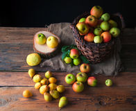 Wilde Äpfel und Birnen im Korb Stockbild