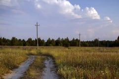 Wilde aard van Rusland in de zomer Stock Afbeeldingen