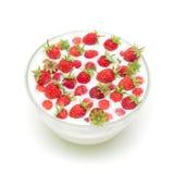 Wilde aardbeien in een kom met melk Stock Afbeelding