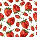 Wilde aardbeien en naadloos aardbeienpatroon stock illustratie