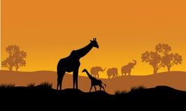 Wilde Afrikaanse dierensilhouetten Royalty-vrije Stock Foto