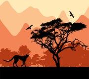 Wilde afrikanische Tiere Stockfoto
