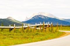 Wilde alaskische Rohrleitung Stockfotografie