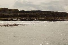 Wilde atlantische Weisen-Bootsreise auf den Klippen von Moher lizenzfreie stockfotos