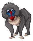 Wilde baviaan op witte achtergrond vector illustratie