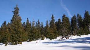 Wilde Berglandschaft umfasst mit Schnee Stockbilder