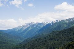 Wilde Bergvallei stock afbeeldingen