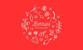 Wilde Bessen en vruchten vectorreeks De framboos, de Kers, de aardbei, de braambes en andere zomer oogsten getrokken Hand stock illustratie