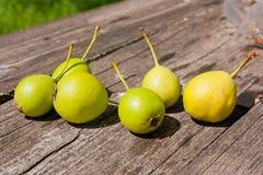 Wilde Birnenfrucht auf dem hölzernen Hintergrund der Weinlese Lizenzfreie Stockbilder