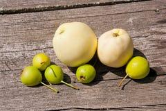 Wilde Birnenfrucht und -äpfel auf dem hölzernen Hintergrund der Weinlese Stockfotografie