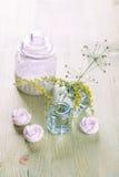Wilde bloemen in een boeket Royalty-vrije Stock Fotografie