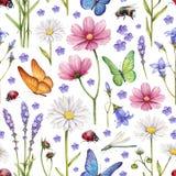 Wilde bloemen en insectenillustratie Stock Fotografie