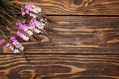 Wilde bloemen op houten achtergrond Royalty-vrije Stock Foto