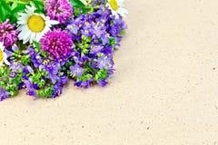 Wilde bloemen op pakpapier Royalty-vrije Stock Fotografie