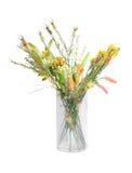 Wilde bloemen in vaas Royalty-vrije Stock Afbeelding