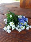 Wilde Blumen auf einer Holzbank im Frühjahr stockfoto