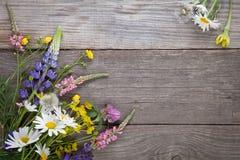 Wilde Blumen auf Hintergrund-Kamille Lupine d des alten Schmutzes hölzernem Stockbild