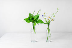 Wilde Blumen in den Glasflaschen Lizenzfreie Stockfotos