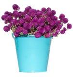 Wilde Blumen in der Wanne lizenzfreies stockbild