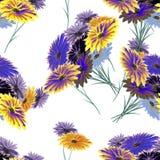 Wilde Blumen des nahtlosen Musteraquarells auf dem weißen Hintergrund Stockfoto