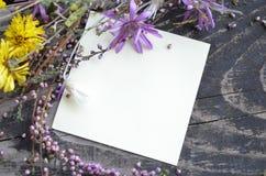 Wilde Blumen des verschiedenen Sommers auf strukturiertem altem hölzernem Hintergrund mit Platz für Text Beschneidungspfad einges stockfotos