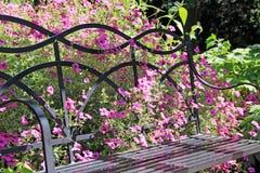 Wilde Blumen und Gartenbank Stockfotos
