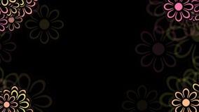 wilde Blumenblumenblätter des Gänseblümchens 4k, Frühlingsbetriebsblüte, Romanze Liebeshochzeitshintergrund stock abbildung
