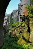 Wilde canion, aardlandschap stock foto's