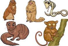 Wilde dieren geplaatst beeldverhaalillustratie Stock Fotografie