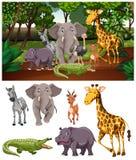 Wilde dieren in het bos royalty-vrije stock afbeeldingen