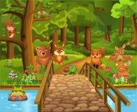 Wilde dieren in het bos en een brug in de voorgrond Stock Afbeeldingen
