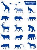 Wilde dierensilhouet stock illustratie