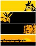 Wilde dierlijke banner Stock Foto