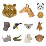 Wilde dierlijke beeldverhaalpictogrammen in vastgestelde inzameling voor ontwerp Zoogdier en vogel vector het Webillustratie van  Stock Foto's