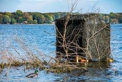 Wilde eendeend met watervogels blind in meer stock foto