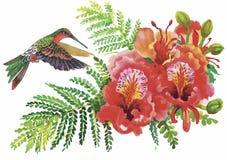 Wilde exotische Vögel des Aquarells auf Blumen Stockbild