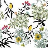 Wilde exotische Vögel des Aquarells auf nahtlosem Muster der Blumen auf weißem Hintergrund Stockbild