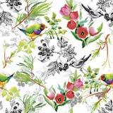 Wilde exotische Vögel des Aquarells auf nahtlosem Muster der Blumen auf weißem Hintergrund Stockfoto