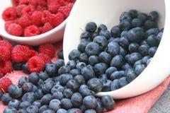 Wilde Früchte Lizenzfreies Stockbild