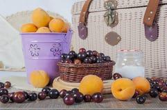 Wilde Früchte Lizenzfreies Stockfoto